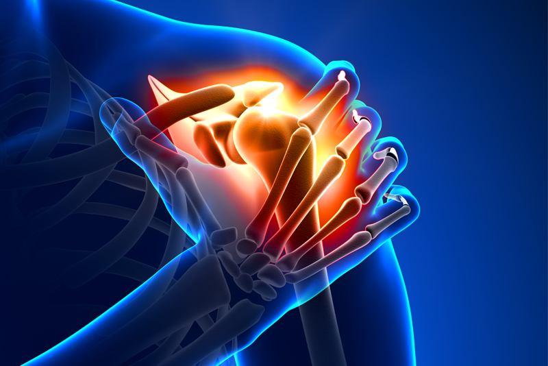 Anatomija ramena
